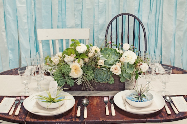 1-Succulent-wedding-decor-tabletop-enjoy-events-Jennifer-Eileen-Photography